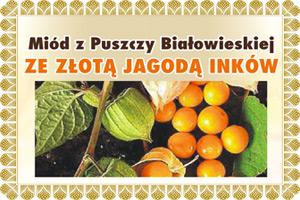 Miód z jagoda inkaską